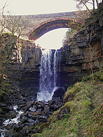 Ash Gill Force