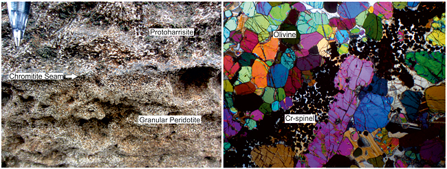 exposure and thin section