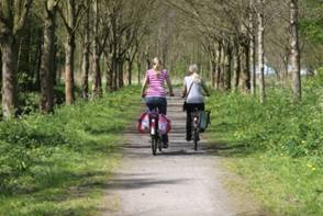 Two women cycling in a beautiful woodland setting.