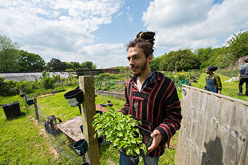Grow your own at Keele