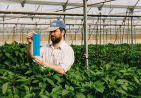 William Kirk in Greenhouse